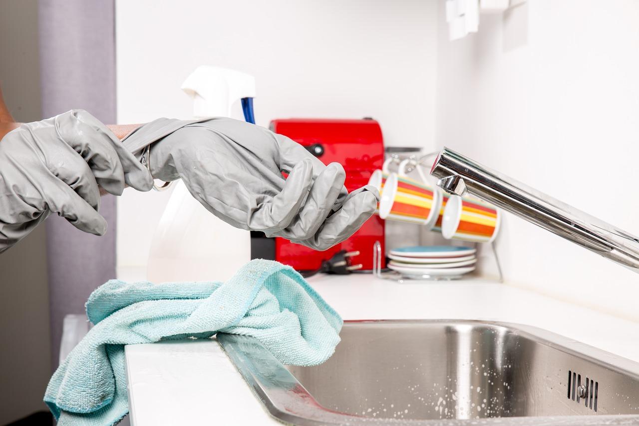 Reinigung von Haushaltsgeräten